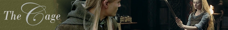 legolas watches the shieldmaiden