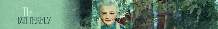 legolas and the butterfly